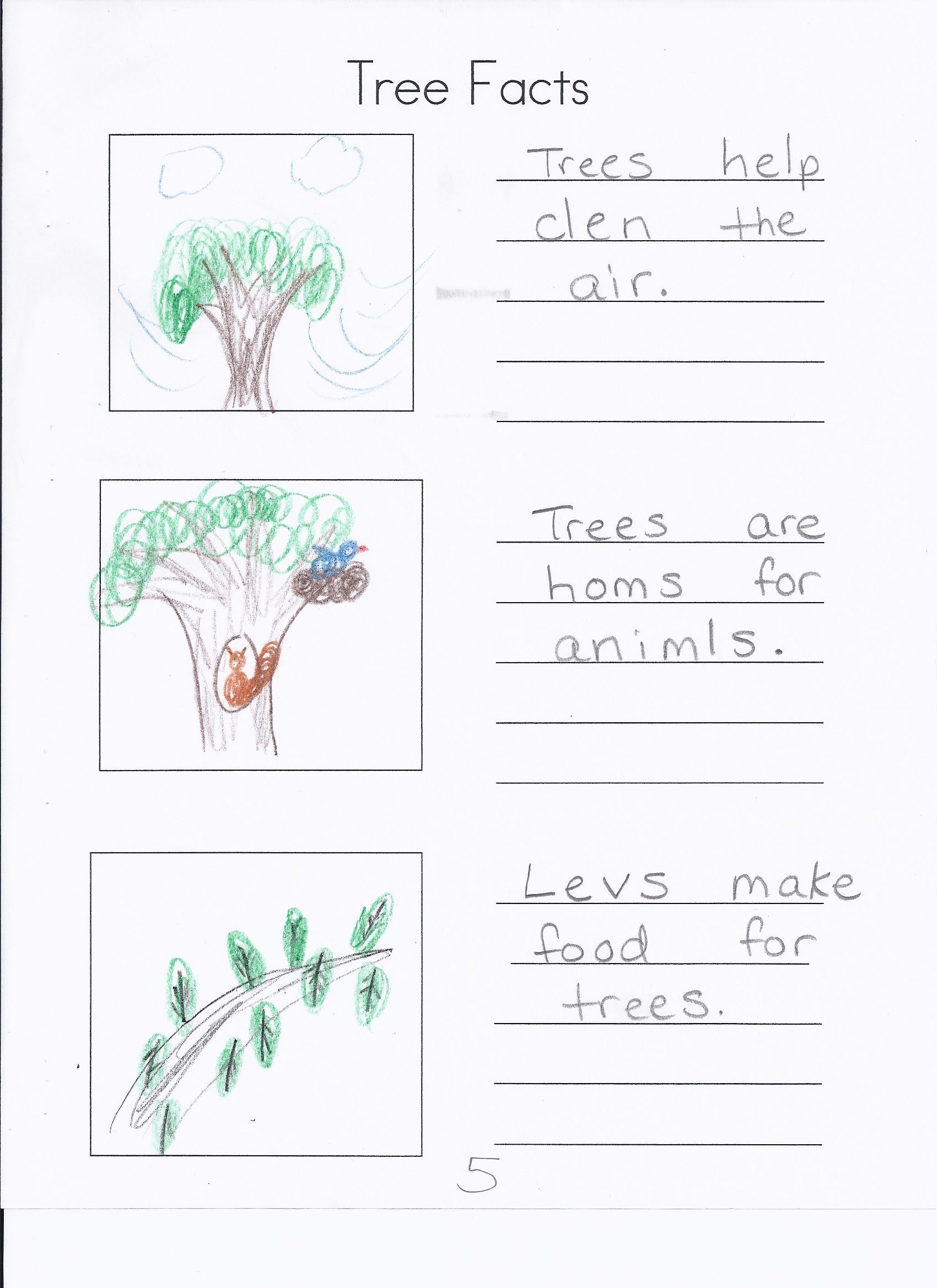 write about tree