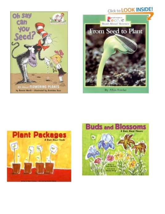 flower seed books1