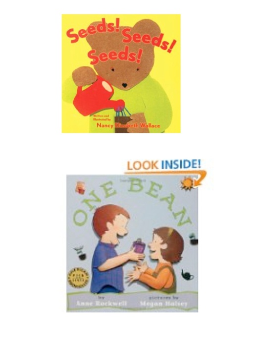 flower seed books4