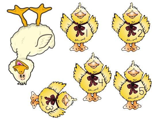 5 Duck pics