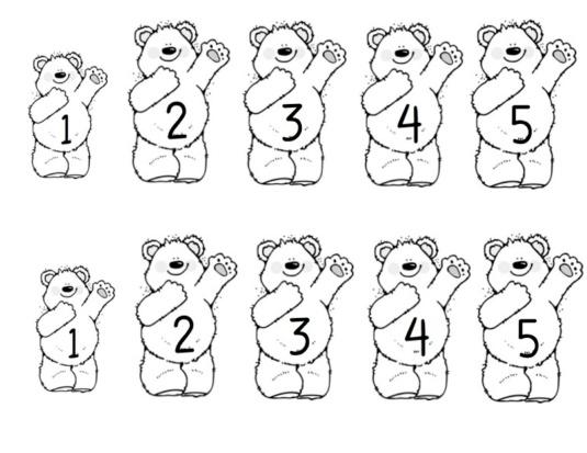 smaller bears