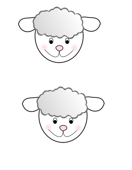 sheep-face